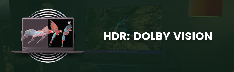 HDR Insights Series Article 4 : Dolby Vision